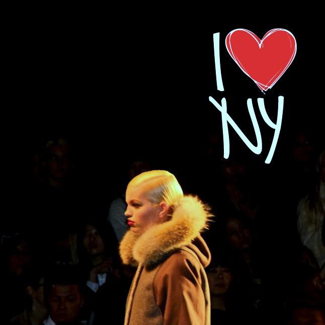 Volunteer For New York Fashion Week